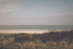 Behind the Dunes on the North Sea