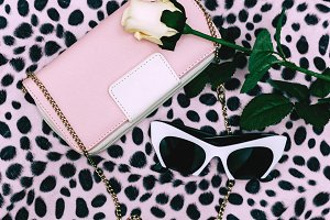 Fashion Clutch and Sunglasses