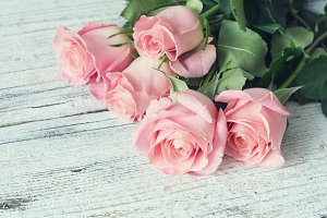 Pink roses on white wooden table