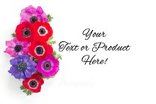 Styled Stock Photography Floral