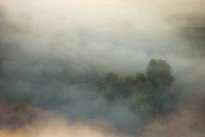 Fog on meadow on autumn morning