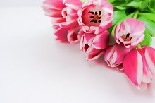 Bouquet of pink flowers Hero/Flatlay