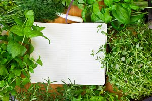 Notebook with herbs