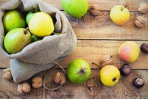 Autumn composition of fruits