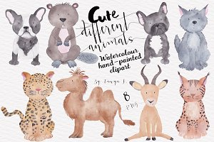 Cute Different Animals Set
