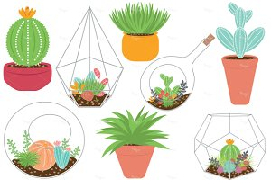 Terrariums and Plants EPS & PNG