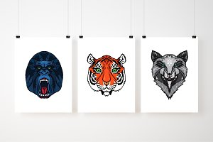 3 Wild Animals