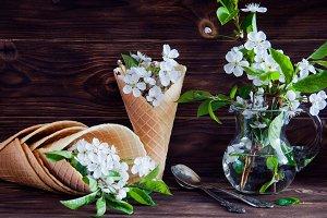 Fresh flowers in ice cream cone