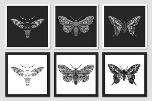 Set of decorative vector Butterflies