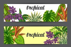 Banners with tropical plants.