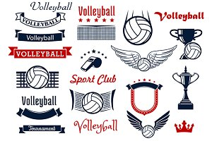 Volleyball sports game elements