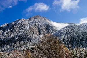 Snow forest in Jiuzhaigou, China