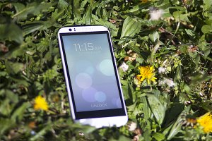 Smartphone in the Grass,Mock-Up