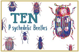 10 Colorful Beetle Vectors