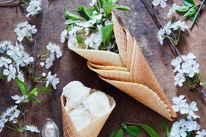 Flowers and ice cream in Waffle cone