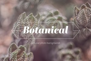 Vintage Botanical Photo Backgrounds