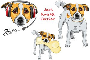 Dog Jack Russell Terrier SET
