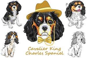 Cavalier King Charles Spaniel SET 2