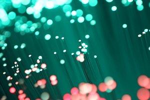 Detail of optical fibers