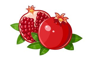 Couple juicy ripe pomegranate fruit stylized leaf