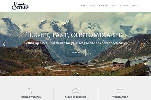 Sentio Pro - elegant blog WP theme