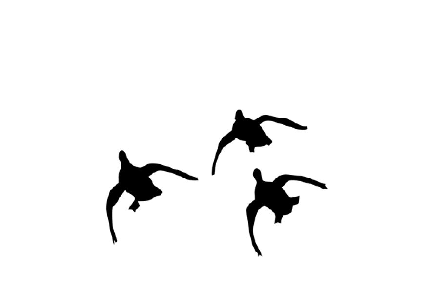 ducks flying svg dxf