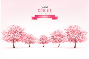 Spring Nature Background With Sakura
