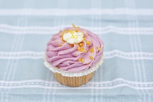 Pastel pink cupcake photograph