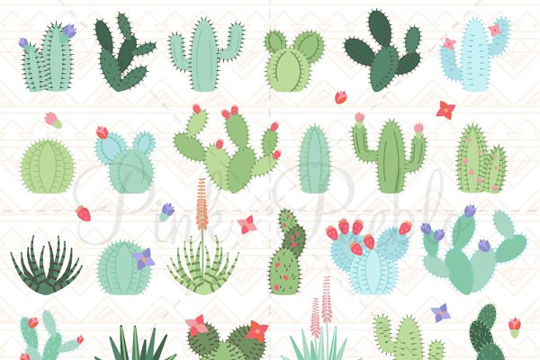 Cactus and Succulent Clipart Vector…