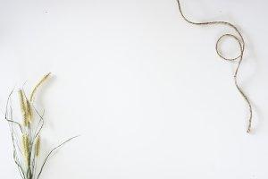 Organic, Natural Minimal Flat Lay