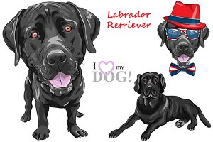 Black Labrador Retriever SET