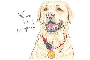 Golden Retriever champion