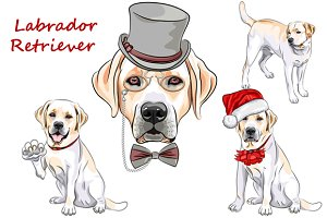 Dog Labrador Retriever SET