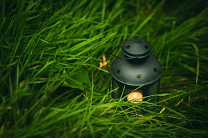 Background with lantern in grass