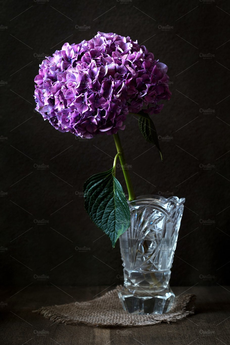 Purple flower in crystal vase nature photos creative market purple flower in crystal vase nature floridaeventfo Images