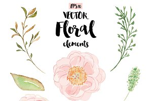 Vector Peony watercolor set