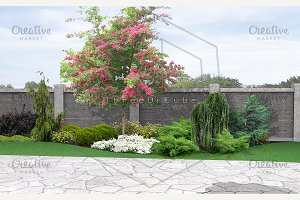Landscaping horticultural background