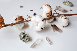 Cotton flower and crystals on table