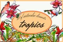 tropical set of 13 elements
