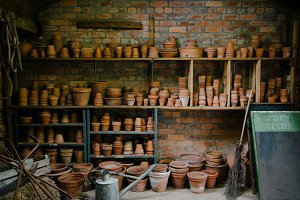An old garden potting shed