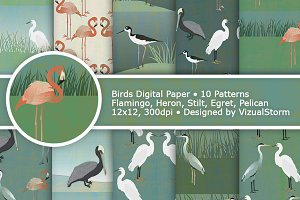 Birds Digital Paper Patterns