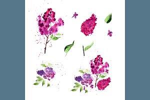 №107 Lilac flower