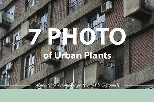 7 Photo Backgrounds of Urban Plants
