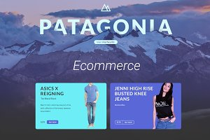 UI Patagonia. Ecommerce part