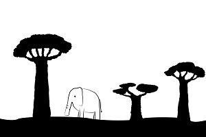 Elephant and baobabs