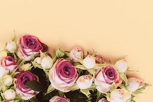 Roses Minimal