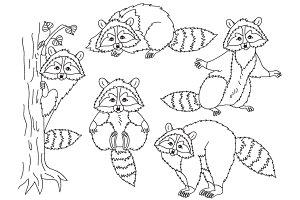 Raccoons Set