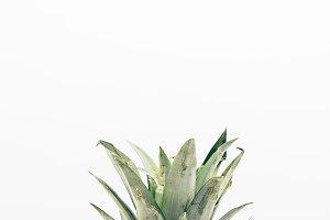 Pineapple Top Crown in Portrait