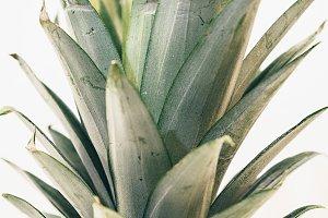 Alternate Pineapple Crown Full Frame