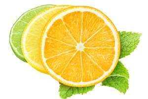 Slices of citrus fruits, isolated